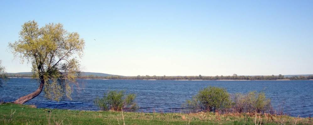 Белое озеро гафурийский район элеватор элеватор стоматологический инструмент