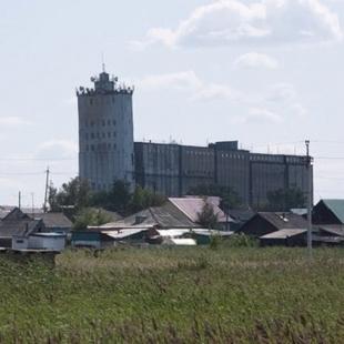 Купино новосибирская область элеватор скорость ленточного конвейера для зерна